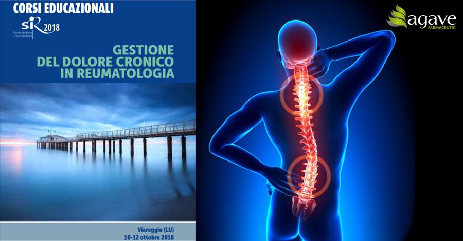 La Gestione Del Dolore Cronico In Reumatologia